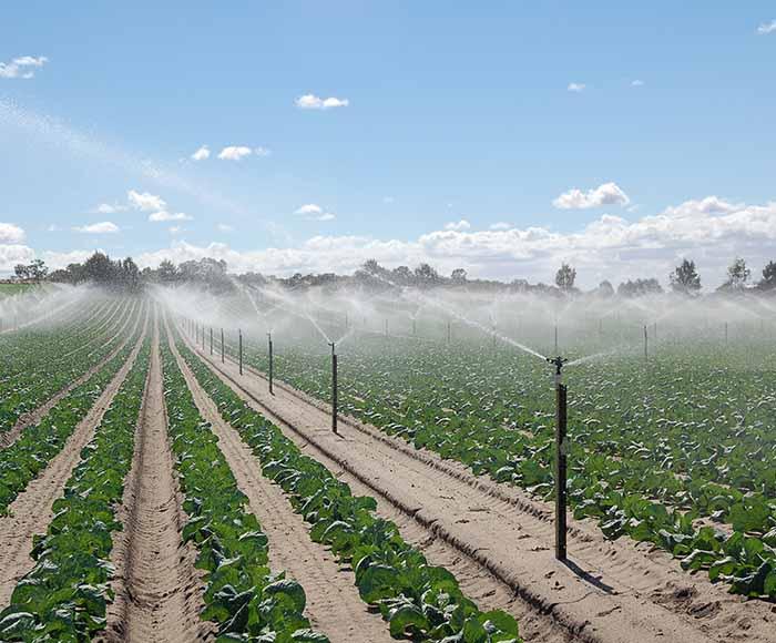 کنترل شوری خاک